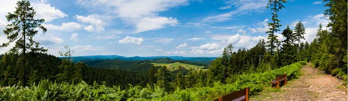 Panoramaweg in Sankt Roman bei Wolfach