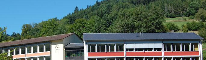 FS Herlinsbachschule Dach